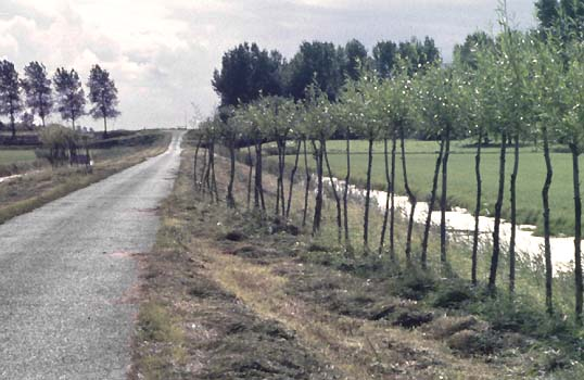 02 De Beemster Netherands and the environmental sculpture of Lucien den Arend - his environmental sculptures ordered by the Beemster Polder - Middenbeemster